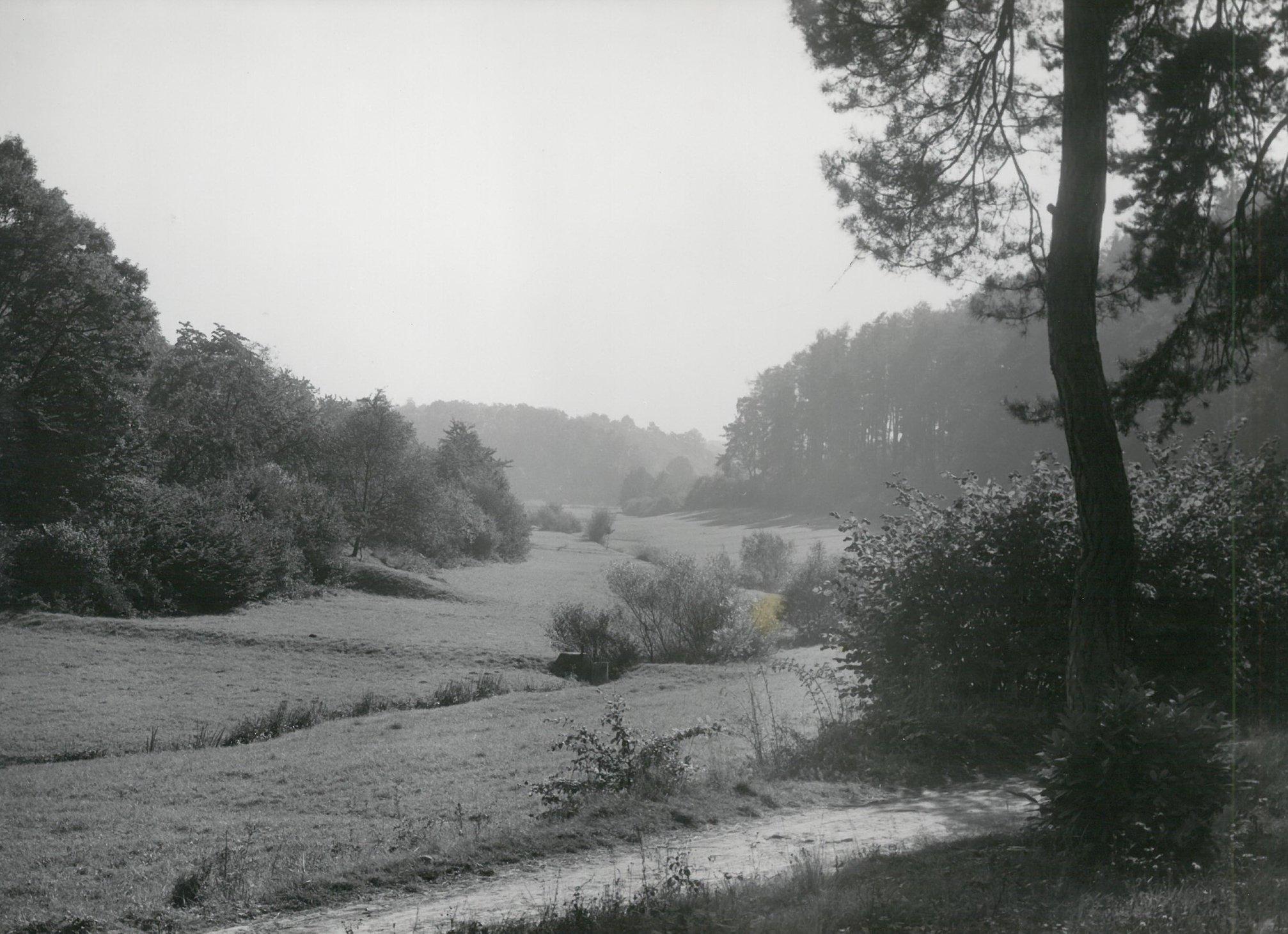 Altenhainer Tal 2